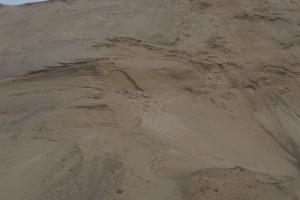 Smulkus smėlis